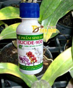 Thuốc đặc trị nấm , vi khuẩn cho lan Olicide-9DD – T19