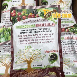 Nấm đối kháng ủ phân TRICHODEMA BACILLUS.SP gói 1kg – T32