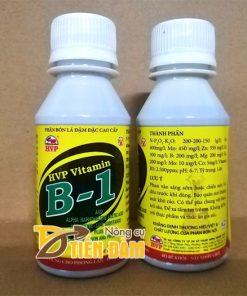 Phân bón lá đậm đặc Vitamin B1 100ml – T30