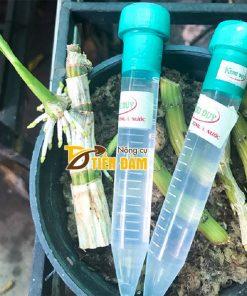 Dung dịch kích mầm kích chồi cho lan Keiki Duy Spray – T41