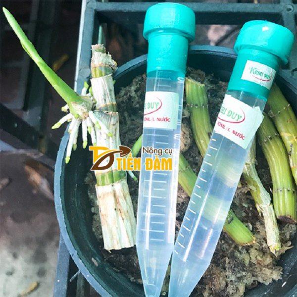 Dung dịch kích mầm kích chồi cho lan Keiki Duy Spray - T41