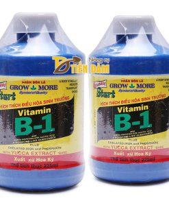 Phân bón tăng trưởng Vitamin B1 nhập khẩu Hoa Kỳ – T31