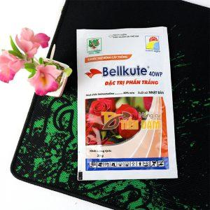 Thuốc đặc trị phấn trắng sương mai trên hoa hồng Bellkute 40WP - T54