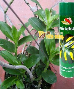 Thuốc xịt bóng lá giữ ẩm lá cho cây văn phòng Leafshine – T50