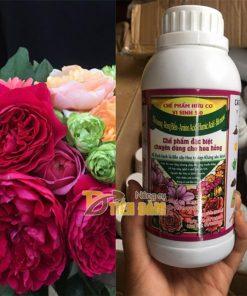 Phân bón dinh dưỡng hữu cơ vi sinh cho hoa hồng 5.0 – T100