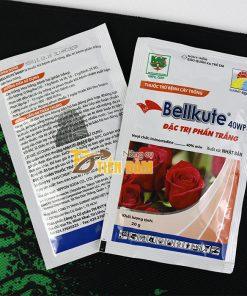 Thuốc đặc trị phấn trắng sương mai trên hoa hồng Bellkute 40WP – T54