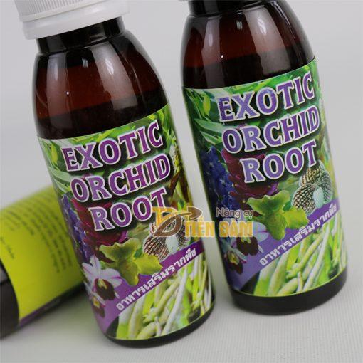 Thuốc kích thích và phục hồi rễ cho cây EXOTIC nhập khẩu Thái Lan - T83