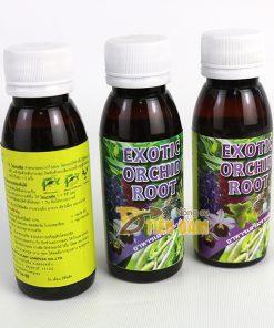 Thuốc kích thích và phục hồi rễ cho cây EXOTIC nhập khẩu Thái Lan – T83