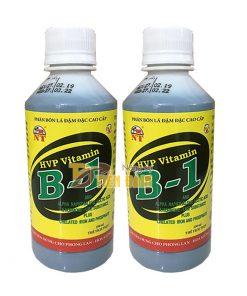 Phân bón kích rễ và cung cấp dưỡng chất cho cây HVP Vitamin B1 – T90