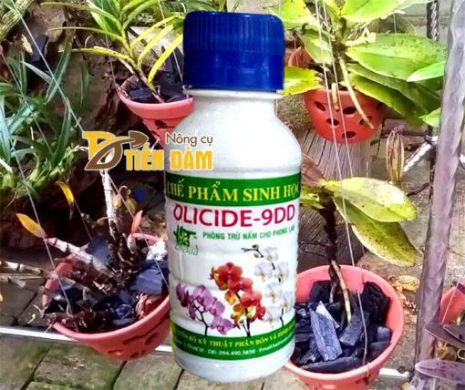 Thuốc đặc trị nấm , vi khuẩn cho lan Olicide-9DD - T19