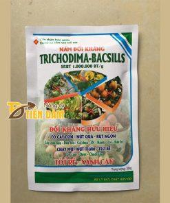 Nấm đối kháng tốt rễ xanh cây cho cây trồng Trichodima – T33