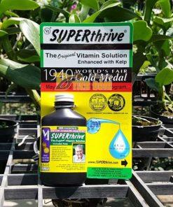 Hoocmon kích thích tăng trưởng cho lan Superthrive – T80
