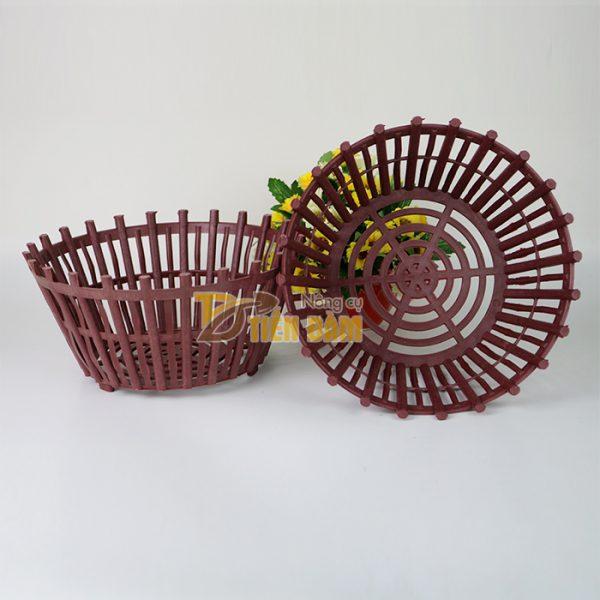 Chậu nhựa trồng lan kèm lan phụ phi 25cm - CN7