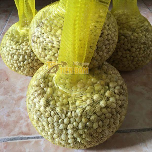 1kg Túi lưới nhựa màu vàng dài 25cm