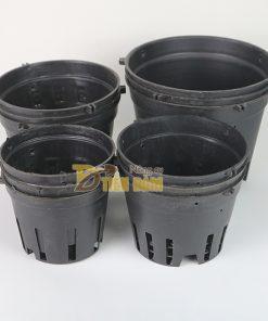 5 chậu nhựa trồng lan phi 21 màu đen – CN11