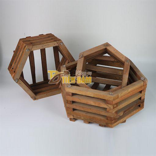 Chậu gỗ trồng lan hình lục giác - set 3 chiếc - CG6