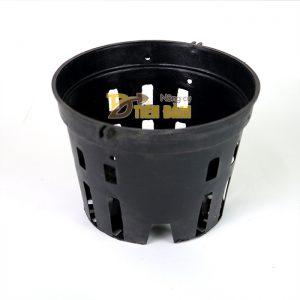 5 chậu nhựa trồng lan phi 18 màu đen - CN6