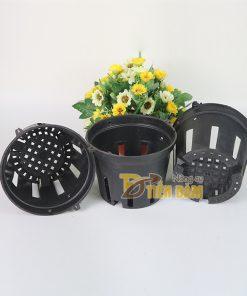 5 chậu nhựa trồng lan phi 14 màu đen – CN5