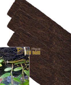 Bảng dớn trồng lan kích thước 60 x 20 x 4cm – GT20