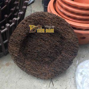 Đĩa dớn trồng lan kích thước 20x20x5cm - GT21