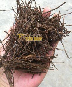 Giá thể trồng lan Dớn Cọng – GT23