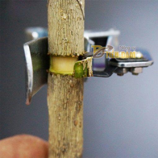 Kẹp khoanh vỏ cây lưỡi bóc loại to - D64