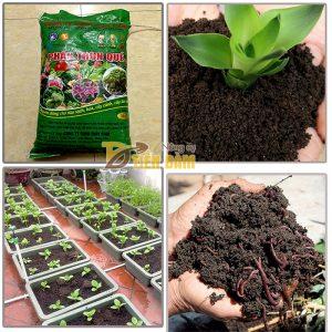 Phân bón dinh dưỡng cho cây trồng Trùn Quế – bao 5kg – VTN2