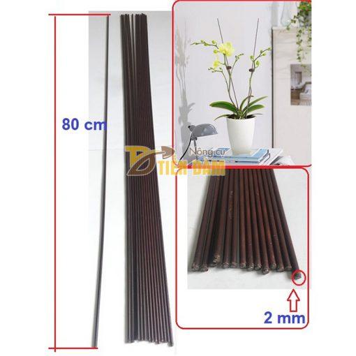 10 que cắm lan dài 80cm màu nâu - VTK8