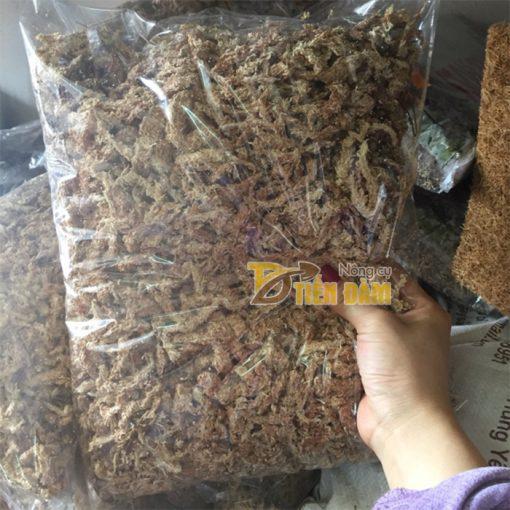 Rêu sâu trồng lan Chile - GT28