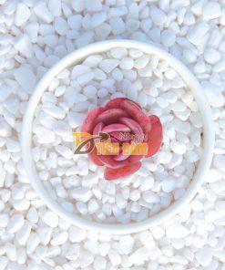 Sỏi trang trí màu trắng kích thước 1x2cm – GT37