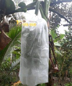 Túi vải bao chuối kích thước 60x100cm