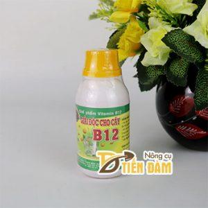 Chế phẩm VITAMIN B12 với cây trồng giải độc cây - T134