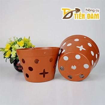 Chậu nhựa trồng lan phi 20 cm giả đất nung - CN14