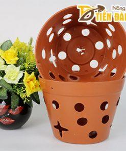 Chậu nhựa trồng lan phi 20 cm giả đất nung – CN14