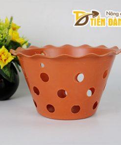Chậu nhựa trồng lan phi 21,5 cm miệng loe – CN20