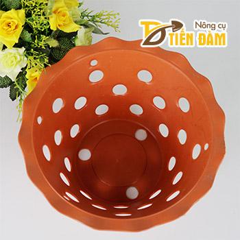 Chậu nhựa trồng lan phi 21,5 cm miệng loe - CN20