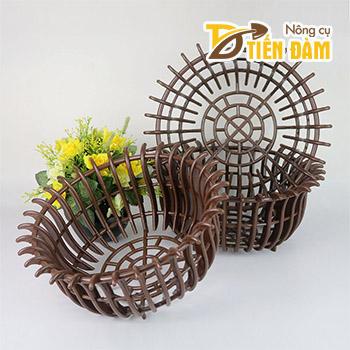 Chậu lan nhựa trồng lan phi 30cm màu nâu - CN33