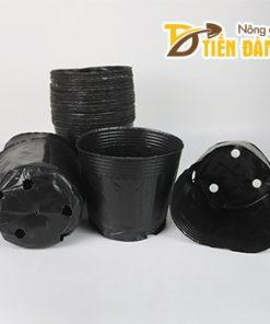 1kg Chậu ươm cây nhựa dẻo màu đen 18×16 – CH6