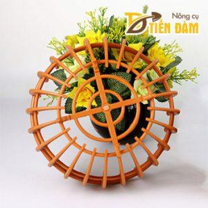 Chậu nhựa trồng lan hình bí phi 25cm – CN36