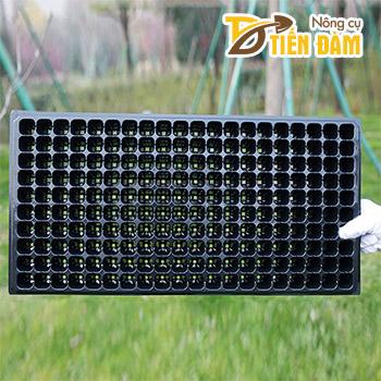 5 Khay nhựa ươm hạt giống 200 lỗ - CH11