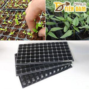 5 Khay ươm hạt giống 72 lỗ – CH16