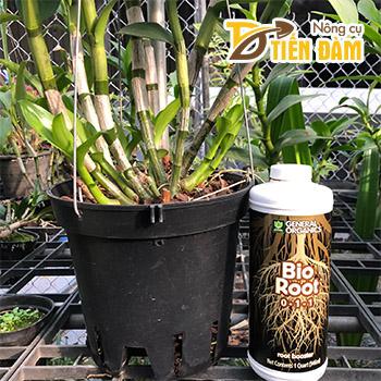 Vua kích rễ Bio Root nhập khẩu Mỹ lọ 946ml – T156