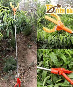 Dụng cụ hái trái cây trên cao dài 2m – D108