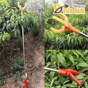 Vợt hái trái cây trên cao dài 1,5m – D107