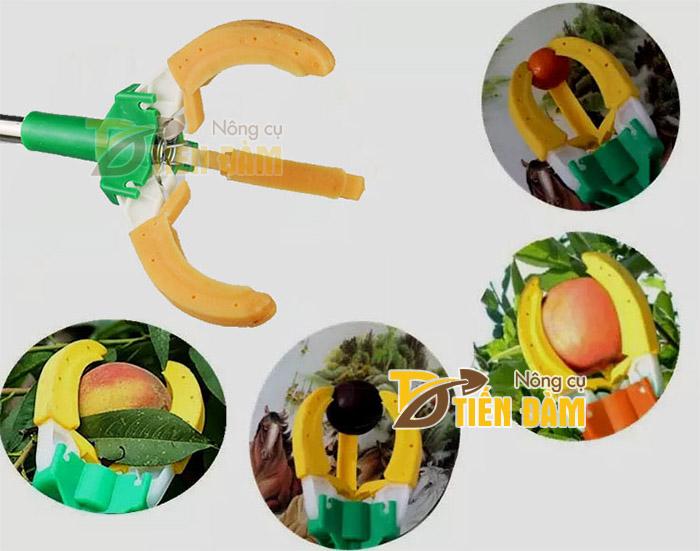 Dụng cụ hái trái cây trên cao có thể thu hoạch táo, cam, đào, mận,...